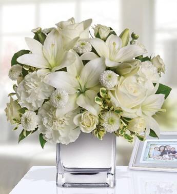 Loves Embrace Roses White