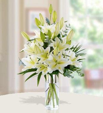 Stunning White 18